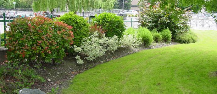 Patrimonio verde interventi di manutenzione straordinaria for Interventi di manutenzione straordinaria
