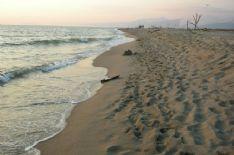 Sorveglianza lungo il tratto di spiaggia della Lecciona