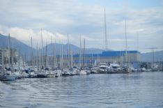 Cede una gru al porto di Viareggio, nessun ferito