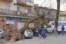 Le richieste devono essere presentate a Sviluppo Toscana Spa. Ammesse solo domande per via telematica
