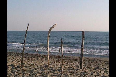 Cadavere in mare alla Lecciona: è di un 42enne di Orbetello