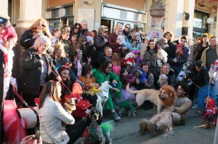 Carnevale con FIDO, torna la festa con gli amici a 4 zampe